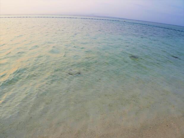 瀬底島の人気ビーチ