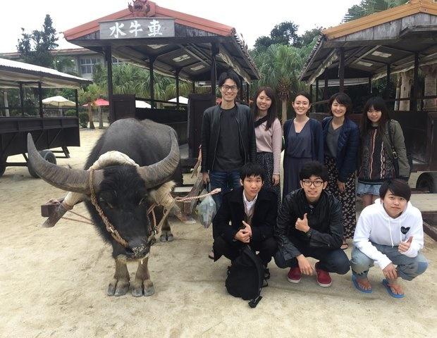 観光のベストシーズン@沖縄には「水牛車」もおすすめ!