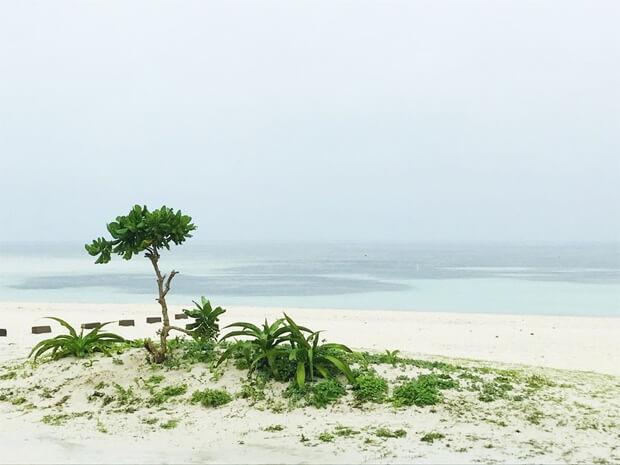 沖縄に長期滞在するメリット